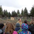 seventh graders visiting the farm